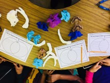 an image of students doing a compare and contrast activity with their printed fossils.