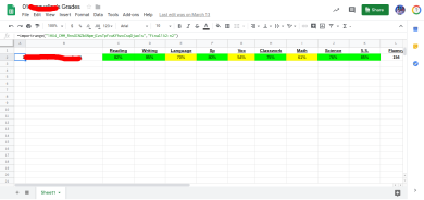 Image of an individual student's grade spreadsheet